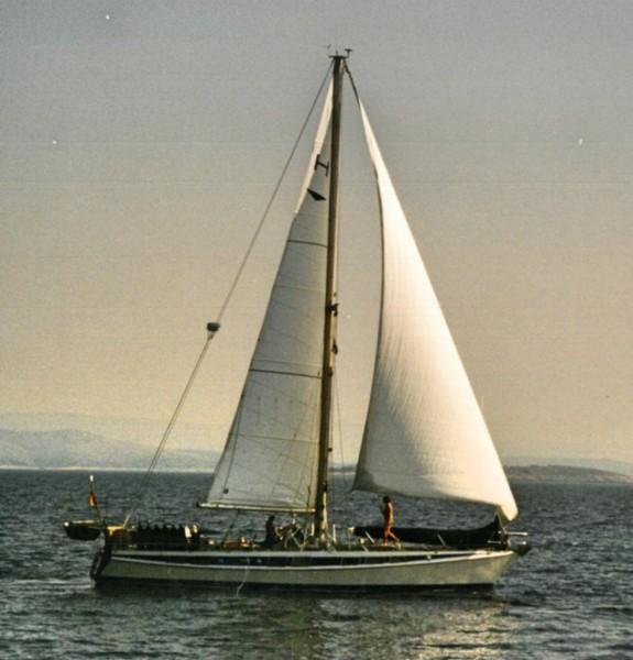 HYDRA 46