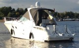 Sea Ray - Sea Ray 33 DA - Image 2