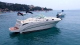 Thumbnail - Sea Ray 255 Sundancer