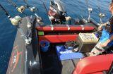 - Master RIB 775 - Neuboot ! (TK)