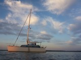 Thumbnail - Catamaran 36 ONE OFF