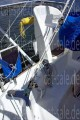 Catana - Catana 381 Owners Version - Image 11